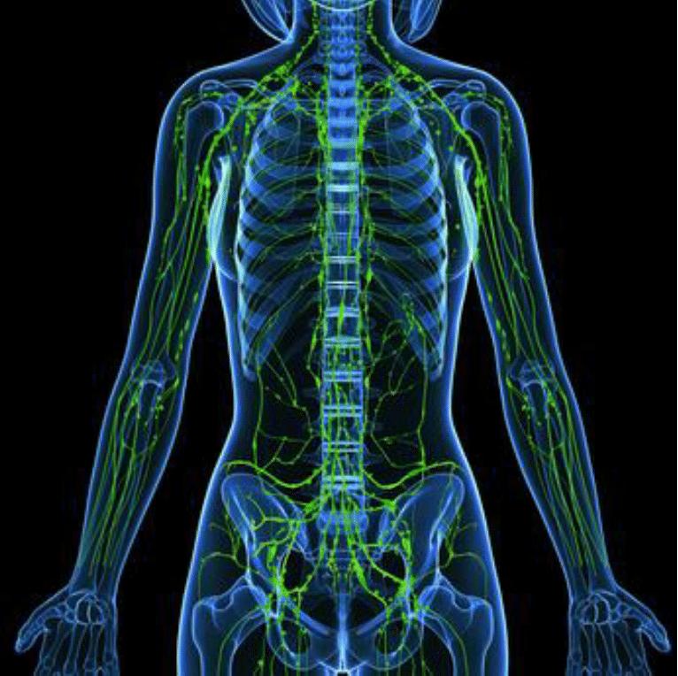 corrective-chiropractic-bee-cave-tx