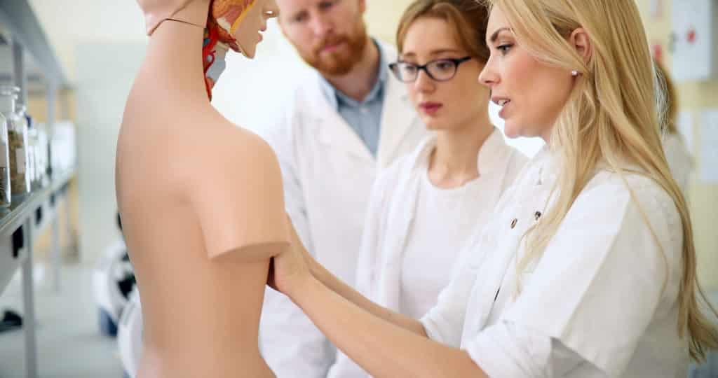 Chiropractors conducting sciatica studies